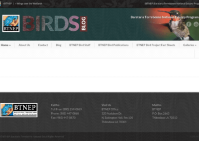 btnepbirds.org